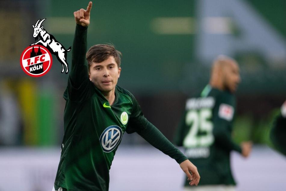 Zweiter Winterzugang fix: 1. FC Köln holt Elvis Rexhbecaj