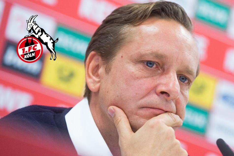 Kölns neuer Geschäftsführer Heldt hat klare Meinung zum Spiel gegen Augsburg