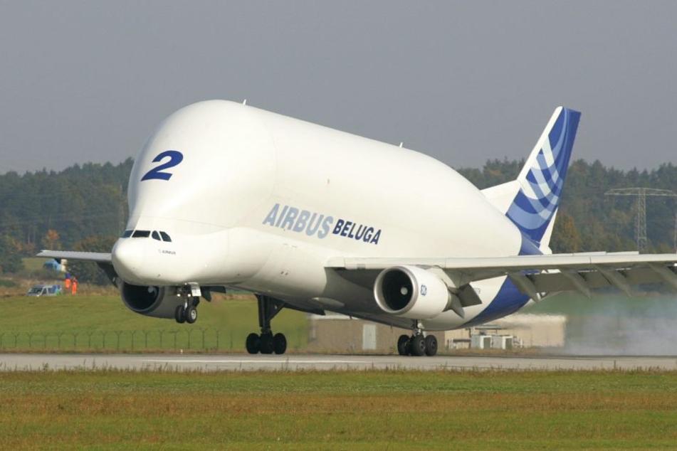 """Airbus-Großtransporter vom Typ """"Beluga"""" (Archivbild)."""