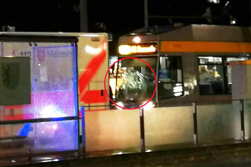 """Die Straßenbahn erfasste die zwei Männer (29, 53) an der Haltestelle """"Neues Rathaus"""" frontal. Die eingedrückte Frontscheibe ist deutlich zu erkennen (Kreis)."""