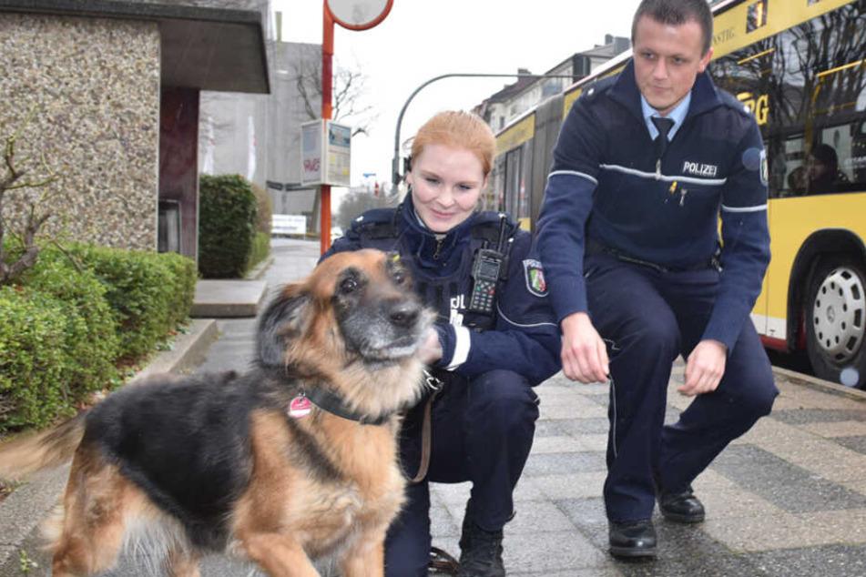 Der Hund wurde von zwei Beamten nach seiner Busfahrt in Empfang genommen.
