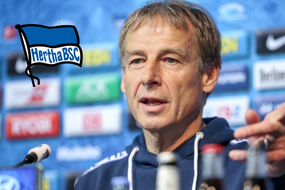 Aufatmen bei Hertha: Trainer-Lizenz von Klinsmann ist gültig!