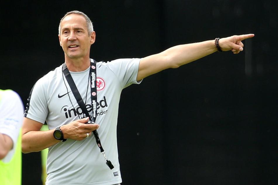 Die Eintracht-Verantwortlichen sind mit der Leistung von Eintracht-Trainer Adi Hütter zufrieden.