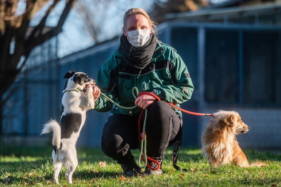 Eva Warmschmidt (35) vom Tierheim Chemnitz freut sich für die Tiere auf ein ruhiges Silvester.