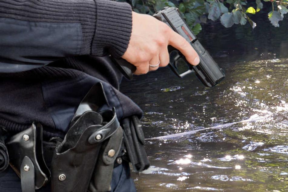 Überfall auf Elektro-Markt: Lag die Tatwaffe monatelang im flachen Gewässer?