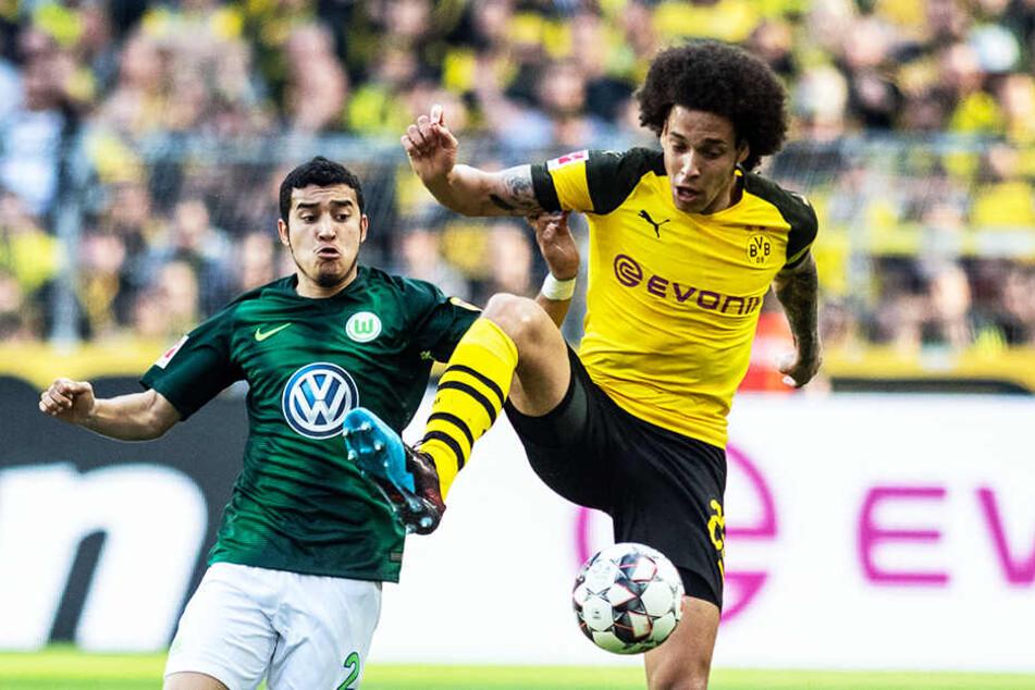 BVB-Mittelfeldmann Axel Witsel (r.) schirmt den Ball gegen Wolfsburgs William ab.
