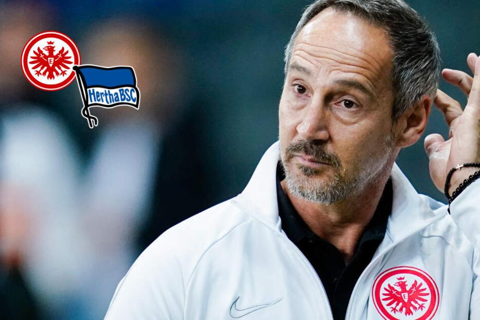 Eklat bei Eintracht gegen Hertha: Machte der Vierte Offizielle gemeinsame Sache mit den Berlinern?