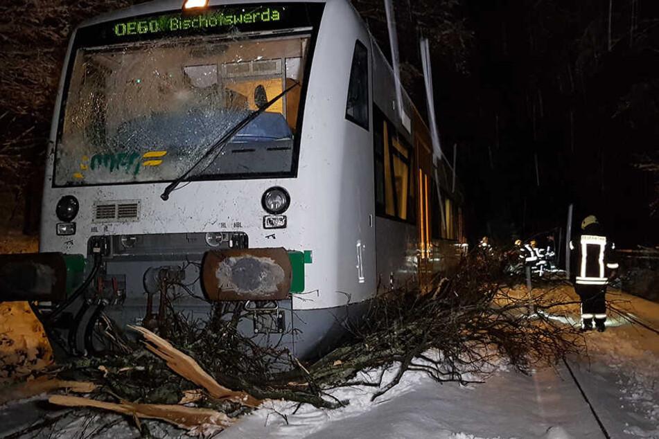 Die ODEG krachte mit einem Baum zusammen.