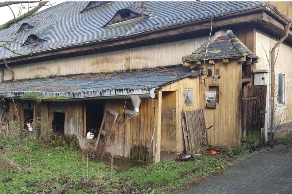 Elf der maroden und nicht denkmalgeschützten Gebäude des Schlobachshofs in Leipzig sollen abgerissen werden.