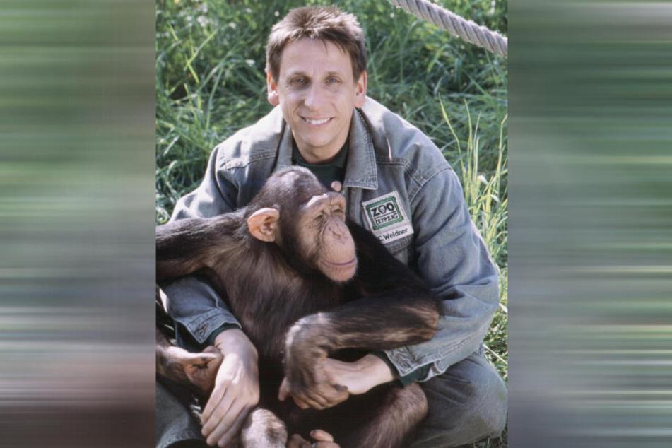 Unbestritten gehören Schimpansen zu den Lieblingstieren von Serienstar Thorsten Wolf.