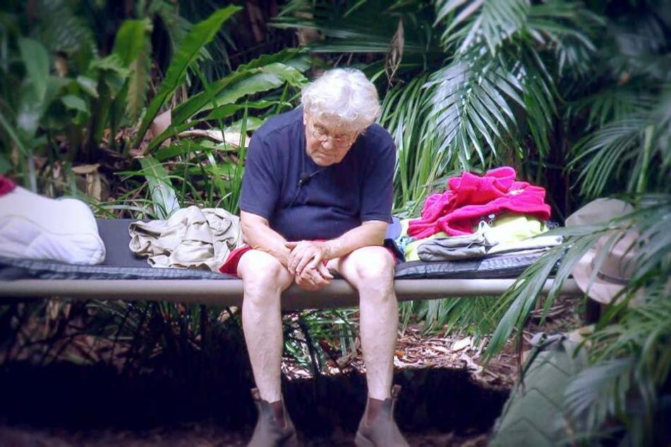 Tommi Piper (77) hat keinen Grund zum Lachen. Nach seiner Plauderei im Dschungel könnte ihn seine Frau vor die Tür setzen.