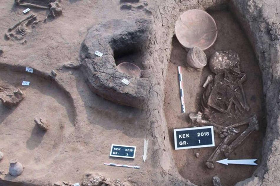 Samt Skeletten! Archäologen entdecken mehr als 5000 Jahre alte Gräber, ein Detail fällt auf