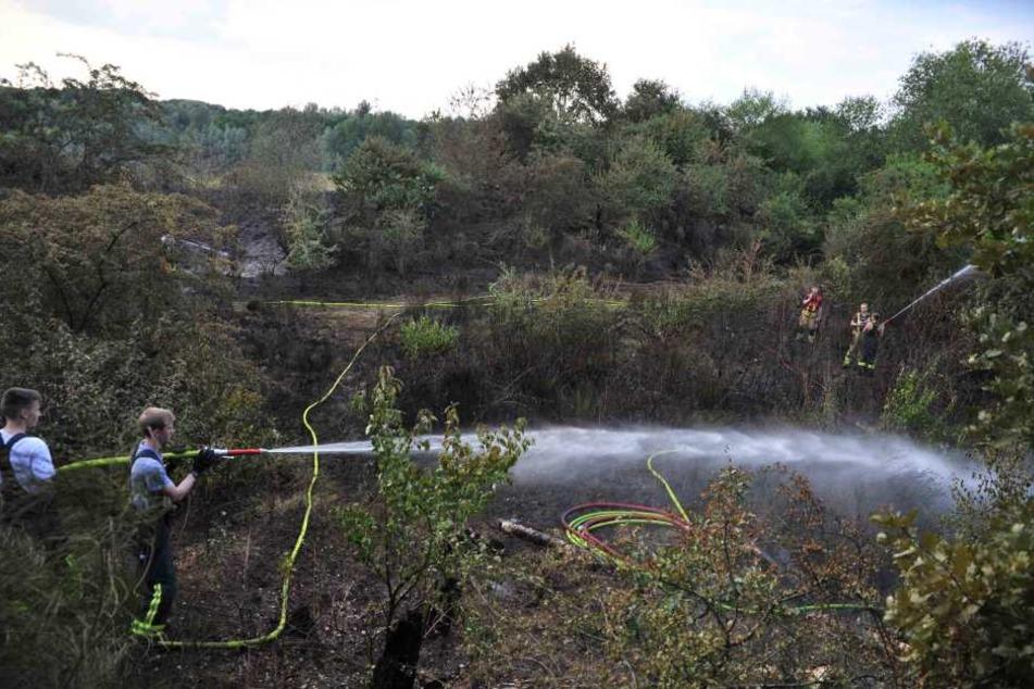 Die Feuerwehrleute hatten zunächst verhindert, dass sich der Brand weiter ausbreiten konnte.