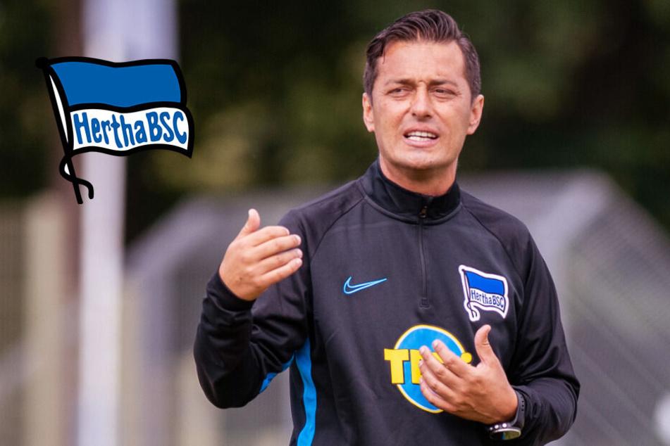 """""""Keine Roboter aus uns machen"""": Hertha-Coach Covic kritisiert Regel-Revolution"""