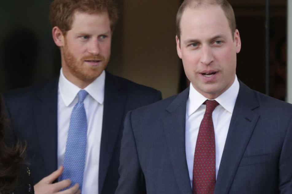 Die Brüder Prinz Harry (35, li.) und Prinz William (37).