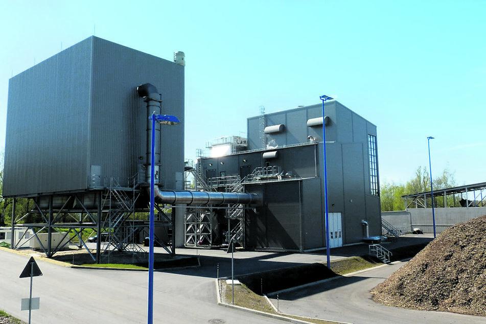 Das Holzkraftwerk in Zwickau: Bisher gab es im Umfeld keine Schadstoffmessungen.