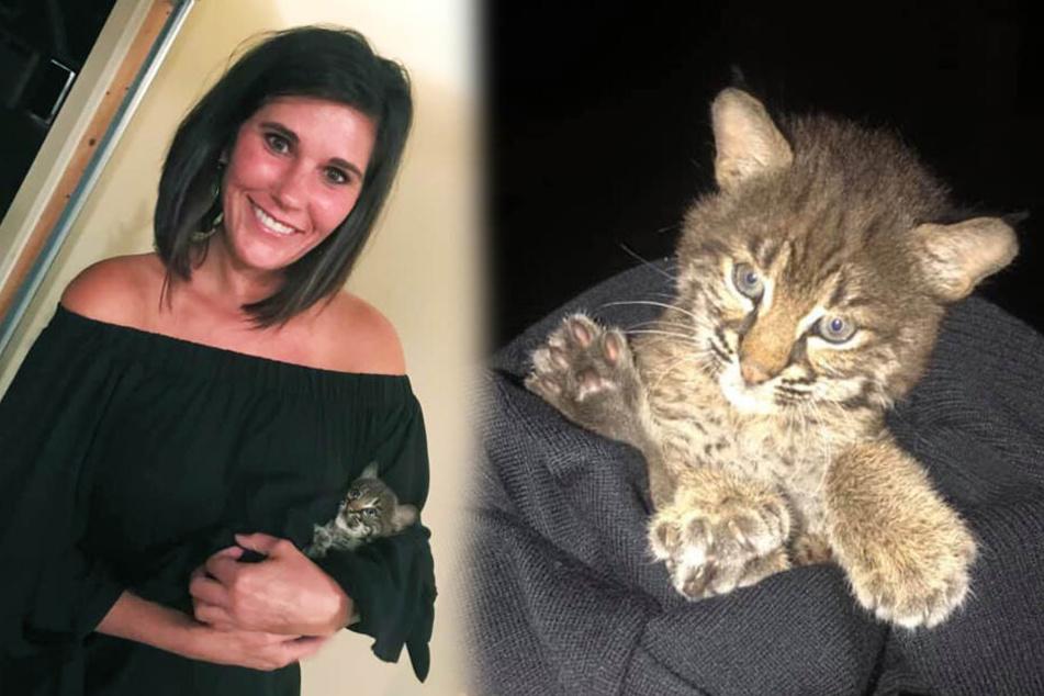 Frau entdeckt wilde Katze und will sie mitnehmen, doch es kommt ganz anders