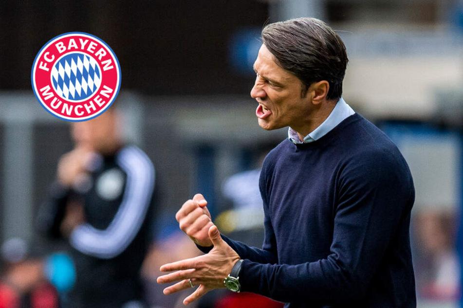 """Nach """"schwieriger"""" Saison: Jetzt wird Bayern-Trainer Kovac endlich wertgeschätzt"""