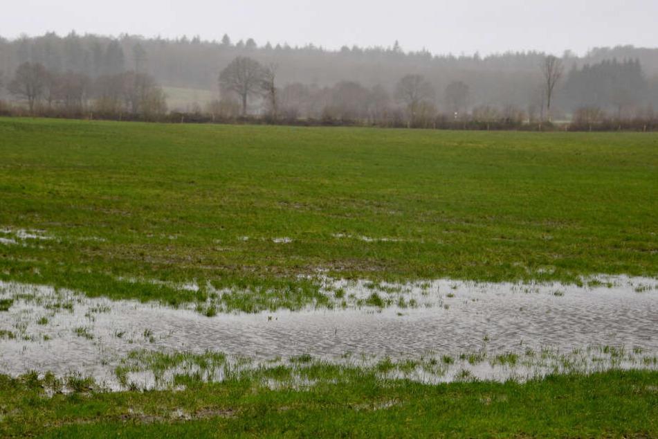 Eine große Pfütze steht auf einem Feld bei Heinkenborstel in Schleswig-Holstein.