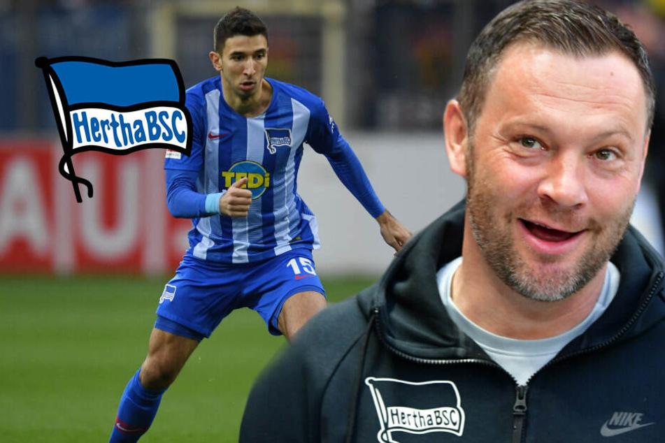 """Hertha-Coach Dardai reicht ein Punkt: """"Müssen improvisieren"""""""