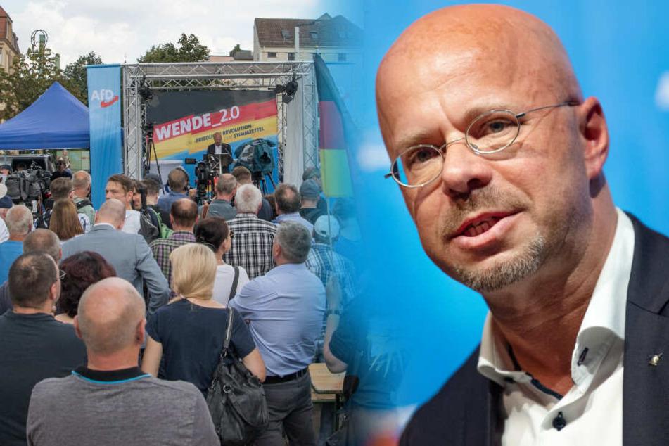 Sechs Wochen vor Wahl: AfD stärkste Kraft in Brandenburg