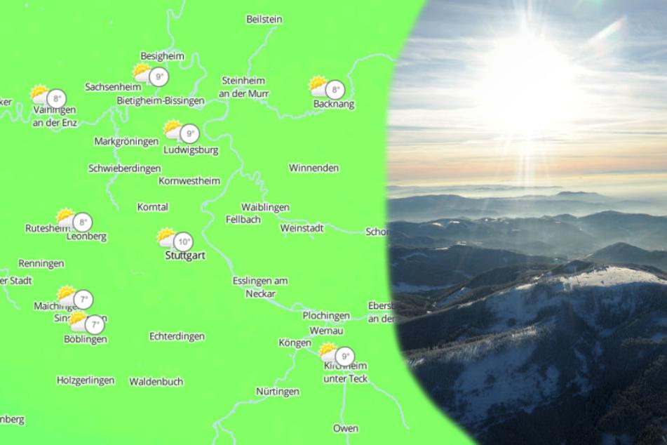 Der Januar soll in Stuttgart im Durchschnitt um rund fünf Grad zu warm sein.