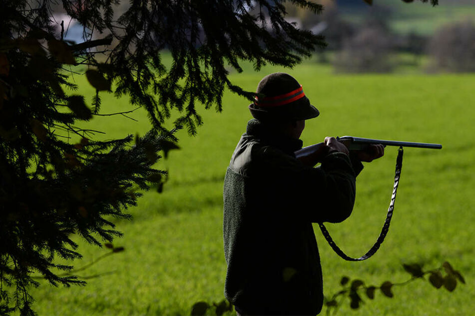Jäger soll mit Gewehren gedroht und drei Mädchen missbraucht haben