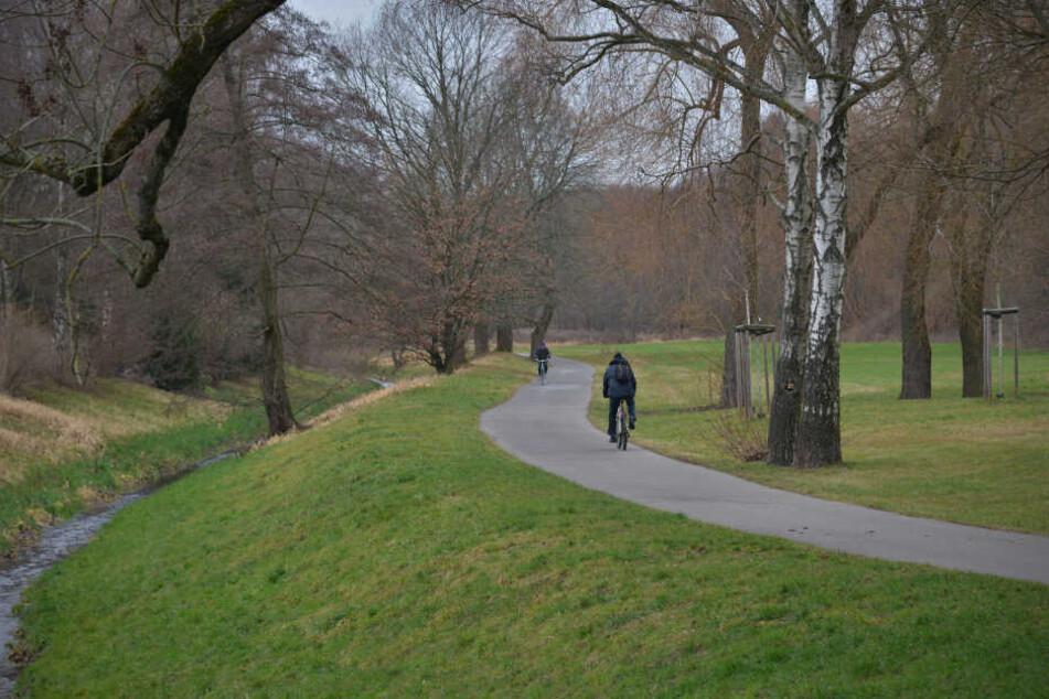Entlang des Radweges gegenüber der Gustav-Wünsch-Straße fehlen Laternen.