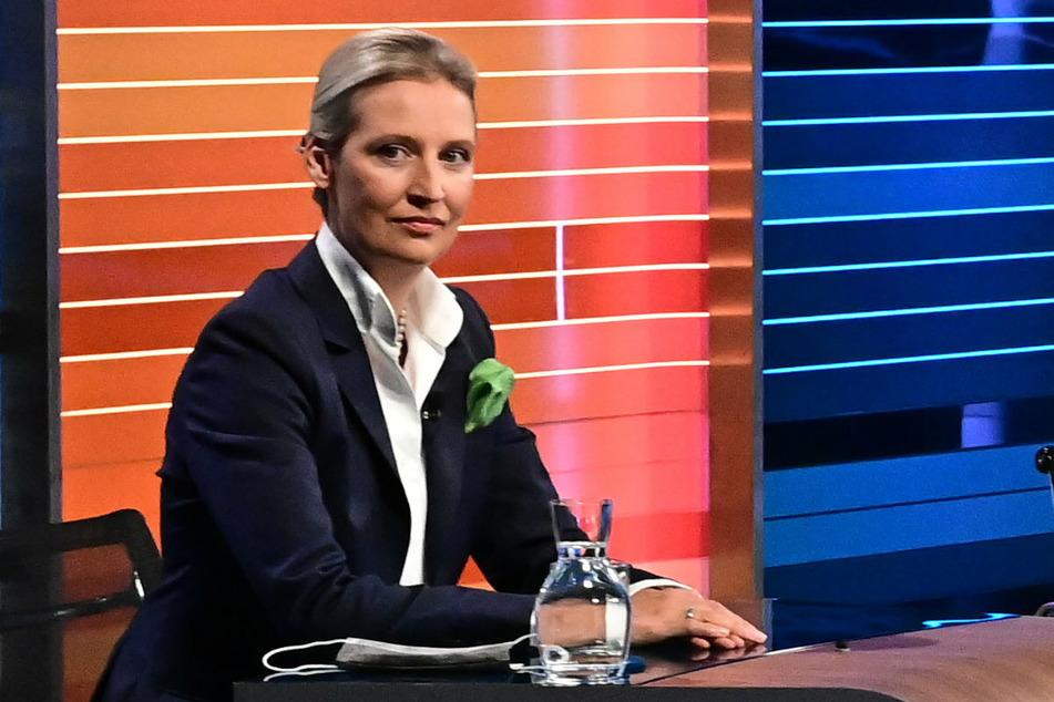 Die AfD-Spitzenkandidatin Alice Weidel (42) hielt fest, grundsätzlich nichts von einer Stigmatisierung von Protestgruppen zu halten.