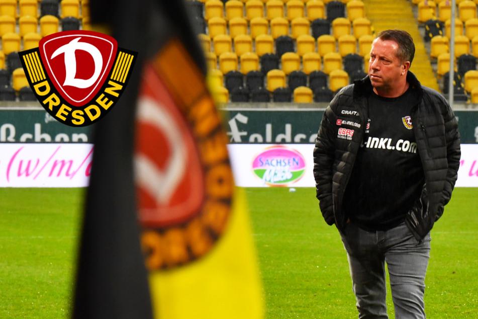 """Dynamo-Coach Kauczinski vor 1860-Spiel: """"Ich gebe alles dafür, dass wir besser werden!"""""""