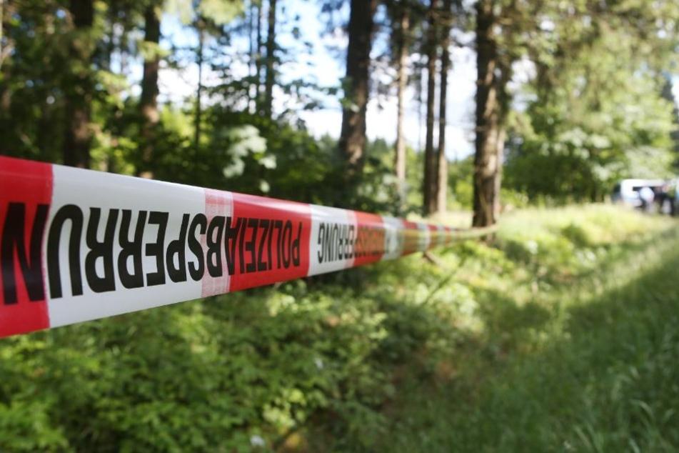Die Polizei fand den leblosen Körper des Vermissten am Dienstag in einem nahegelegenen Waldstück. (Symbolbild)