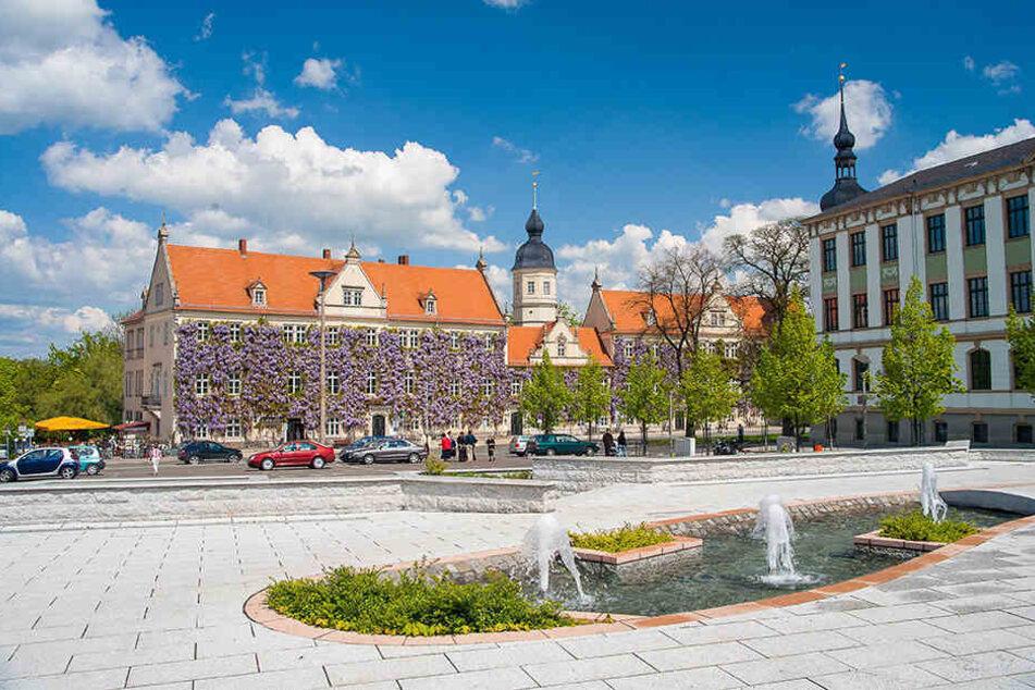 Vom 6. bis zum 8. September lädt Riesa zum Tag der Sachsen ein.