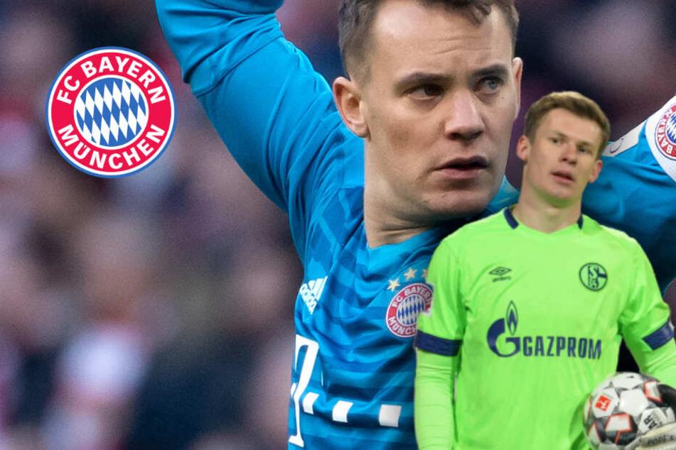 Neuer beim FC Bayern: Wird er vom Schalke Torwart Nübel abgelöst?