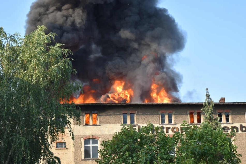 In dem leerstehenden Gebäude in Zittau brach in den Morgenstunden am Sonntag ein heftiger Brand aus.