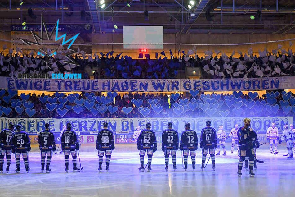 Es geht wieder los: Eislöwen starten in neue DEL2-Saison!