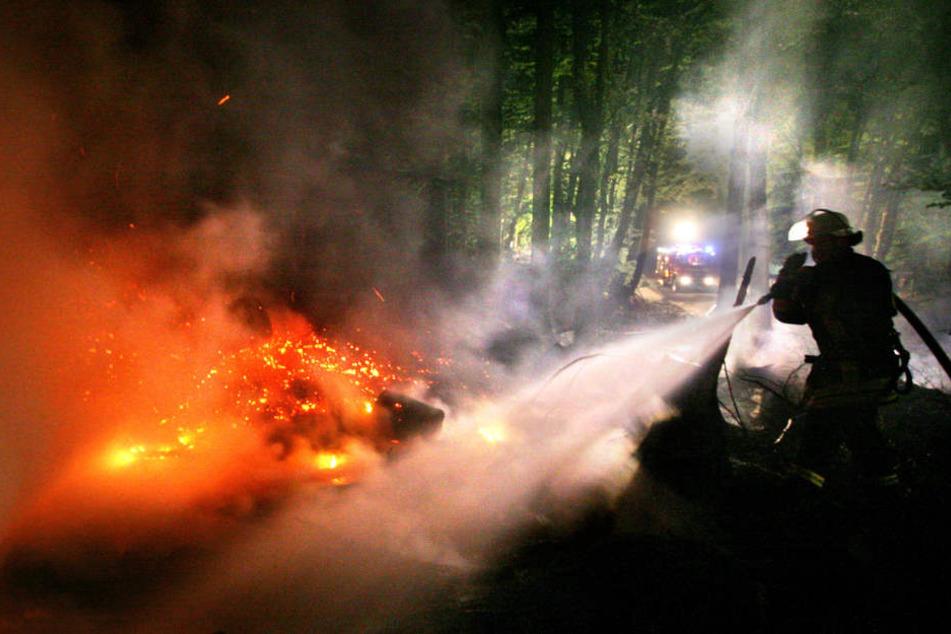 Im Landkreis Zwickau hat ein Unbekannter illegal abgelagerten Müll angezündet und dadurch einen Wald in Brand gesteckt. (Symbolbild)