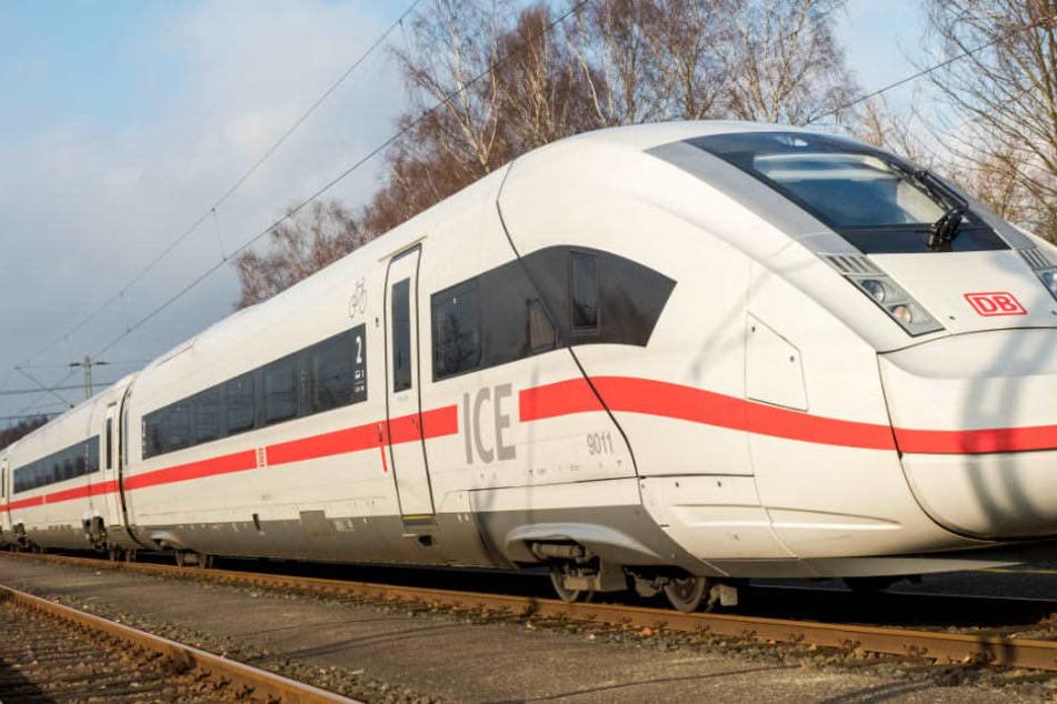 Wegen eines Vogels musste die Zugstrecke Hamburg-Berlin etwa eine Stunde gesperrt werden. (Symbolbild)