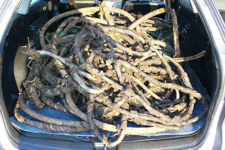 200 Kilo Kabel fanden die Ermittler im Kofferraum des Mazdas.