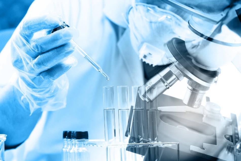 Forscher haben einen Virus entwickelt, der es mit einer Krebszelle aufnehmen kann. (Symbolbild)