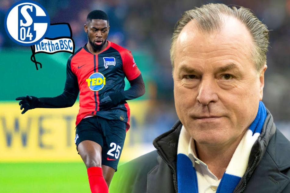 Nach Rassismus-Vorwurf von Hertha-Profi Torunarigha: Jetzt spricht Schalkes Tönnies