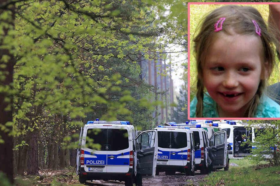 Beim Holzsammeln im Wald verschwunden: Wird Inga jemals gefunden?