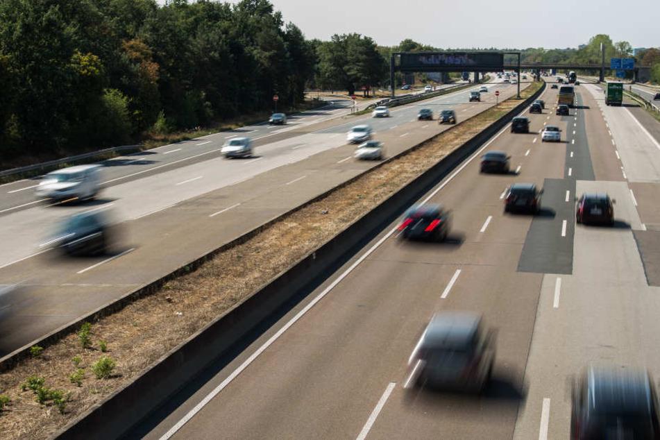 Bei Pfungstadt rannte der Schimmel auf die Farbahn der A5. (Symbolbild)