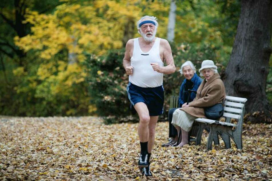 """Der Film """"Sein letztes Rennen"""" mit Dieter Hallervorden wurde in dem Park gedreht."""