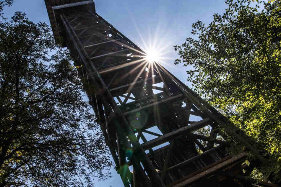 Der im Oktober abgebrannte Goetheturm soll bald wieder in altem Glanze erstrahlen.