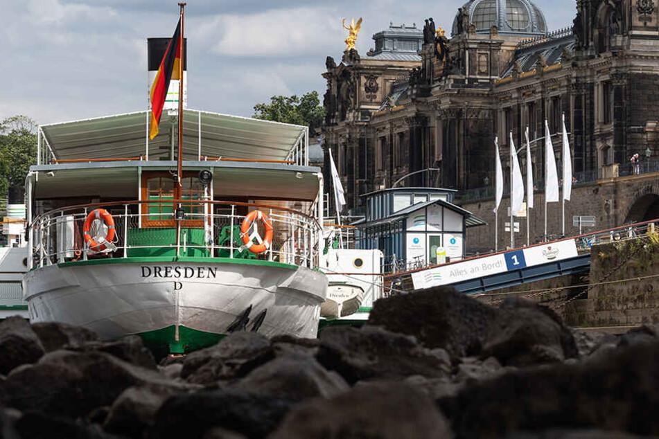 Ebbe in der Elbe! Droht jetzt der Weißen Flotte der Ausverkauf?