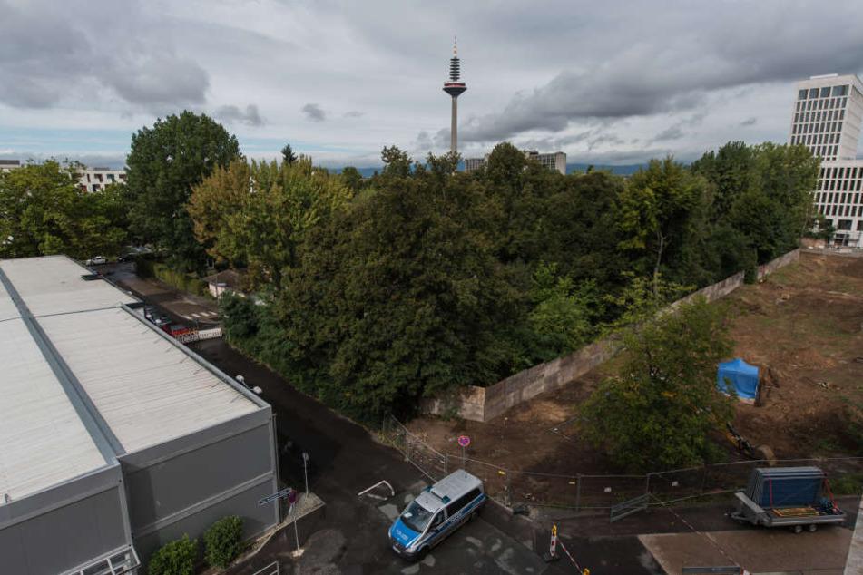Die gefundene Bombe befindet sich unter einem blauen Zelt nahe der Universität.