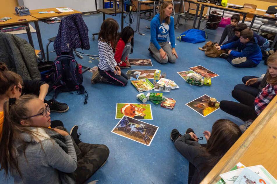 Die Tierschutzlehrerin Melanie Reiner, Geschäftsführerin Animals United, gibt in der Schul-Tierschutz-AG einer Mittelschule eine Unterrichtsstunde.