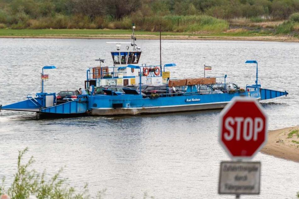 Eine Fähre fährt auf der Elbe bei Bleckede. (Archivbild)