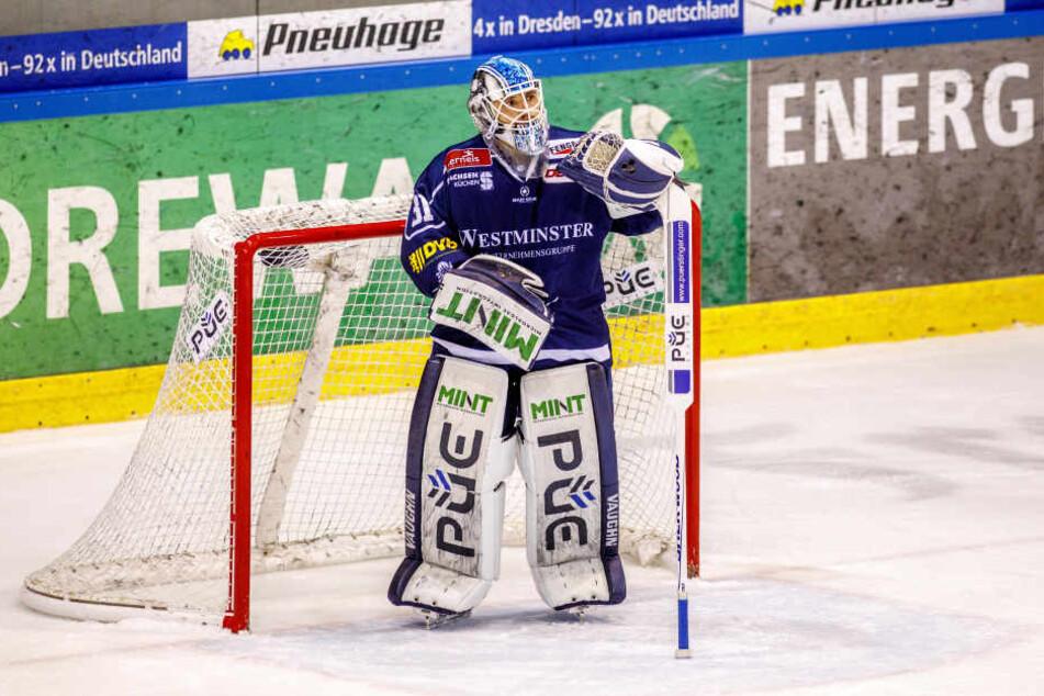 Marco Eisenhut ist in letzter Zeit richtig gut aufgelegt, doch vor seinem Tor agieren die Dresdner Eislöwen zu nachlässig.