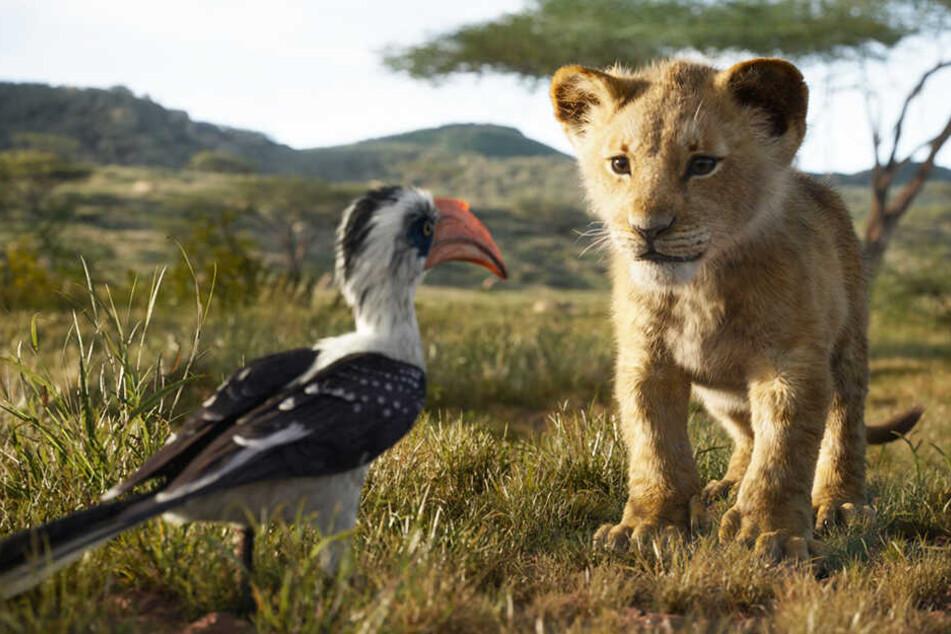 """Selten war ein Film so umstritten und wurde so unterschiedlich gesehen, wie """"Der König der Löwen""""."""